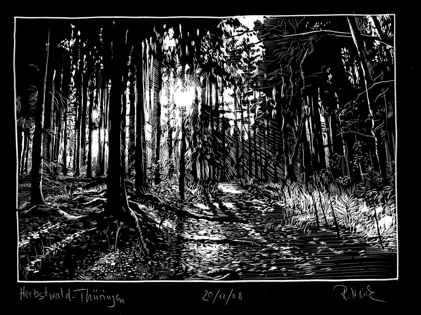 201208_Herbstwald