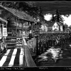 181017_Ketchikan-Creekstree